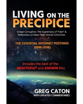 Living on the Precipice: Global Corruption, the Supremacy of Fake, and Reflections on Near Term Human Extinction -- (Paperback, 2018)